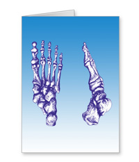 Greetings cards and post cards featuring the bones of the human foot