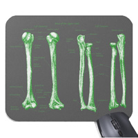 Bones of the human lower limb, mouse mats