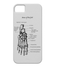 Phone covers with bones of the human foot